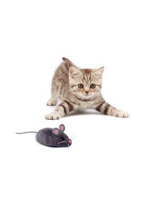 Hexbug Mouse Cat Toy Maus GRAU Katzenspielzeug Kinder Spielzeug Roboter 480-3031